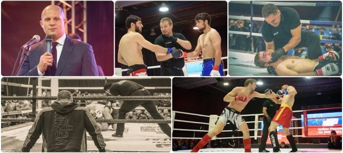 Кубок России по MMA 2015